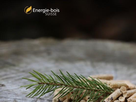Energie-bois Suisse - Notre énergie indigène qui se renouvelle !